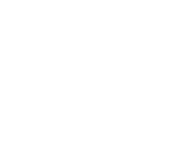 camera solid